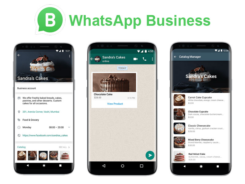 WhatsApp Business Özel Ders